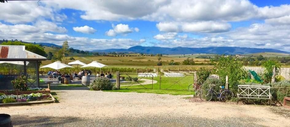 Acacia Ridge - Yarra Valley Winery Tours